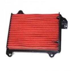 Filt. Aire Hiflofiltro HFA1209