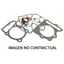 Kit completo juntas de motor Winderosa 808233