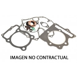 Kit completo juntas de motor Winderosa 808239