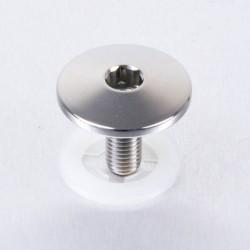Tornillo parte alta cilindro Pro-Bolt Suzuki Acero Inox Natural LSSSITEM1