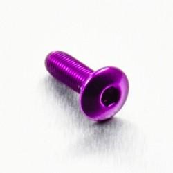 Tornillo de Aluminio Pro-bolt cabeza redondeada M4 x (0.5mm) x 12mm Fine violeta LFB412FP