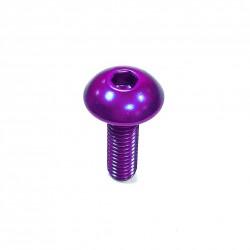 Tornillo de Aluminio Pro-bolt cabeza redondeada M5 x (0.8mm) x 16mm violeta LFB516P