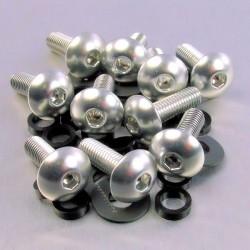 Kit tornillos de carenado Pro-Bolt (10 pack) Aluminio plata FB516-10S